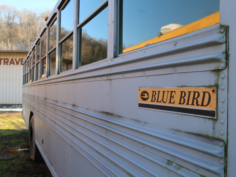 Conventional Bus For Sale 1999 Bluebird